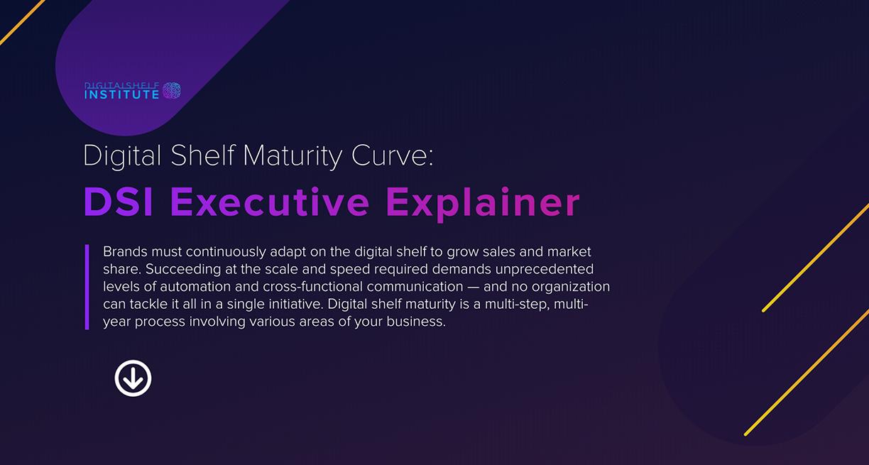 Digital Shelf Executive Explainer-1