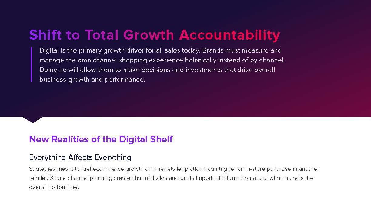 Shift to Total Growth Accountability - Executive Explainer1